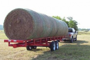 hay at Farmer's Coop