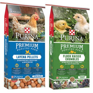 Purina Layena Poultry Feeds