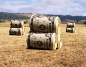finance opportunities at Farmer's Co-op