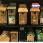 Noah's Pets & Wild Birds