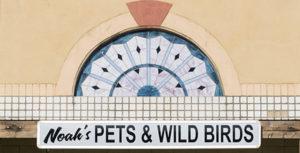 Noahs pets & wild birds