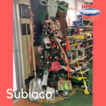 Christmas Tree Challenge at Farmers Coop Subiaco