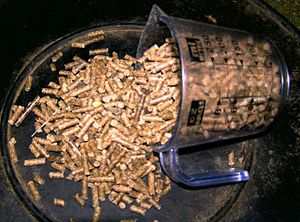 pellet rations for horses, Senior Horse Nutrition