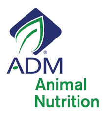 ADM cattle feeds