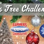 2017 Christmas Tree Challenge Farmers Coop