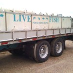 Fish truck for fish truck delivery