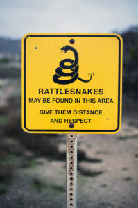 yellow sign with a warning for rattlesnakes
