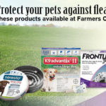 Flea and tick products available at Farmers Coop