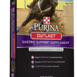 Outlast Gastric Support Supplement Horse feed