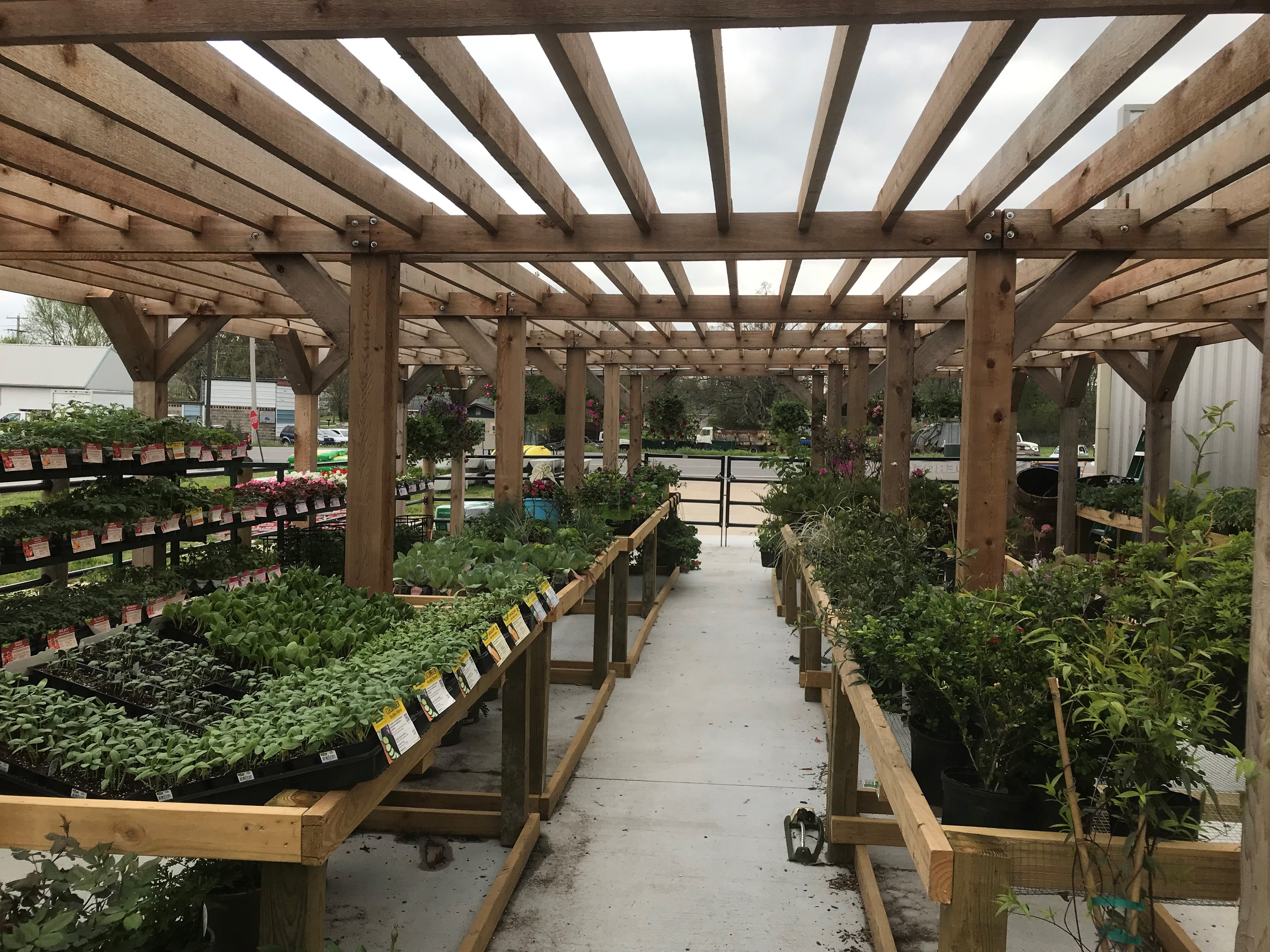 Fresh Vegetable Plants, Perennials and Hanging Baskets – Garden ...
