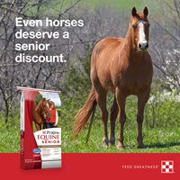 Purina Horse Supplements