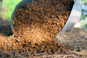 Livestock feed in a large metal scoop.