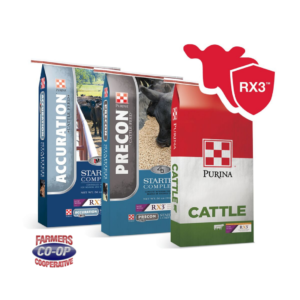 Purina Starter Cattle Feeds with immune support at Farmers Coop.