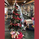 Farmers Coop Christmas Tree Contest 2020 (3)
