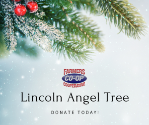Join us in giving back to those in need right here in our community, buy choosing an angel from the Lincoln Secret Santa Angel Tree.