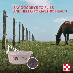Check out the Purina EquiTub supplement with ClariFly. Say goodbye to flies , and hello to gastric health + optimal body condition.