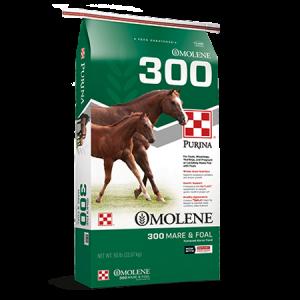 Purina Omolene 300 Horse Feed in Green Bag. Two brown horses.